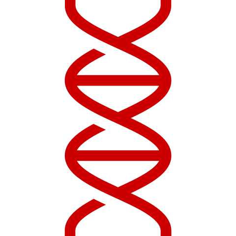 Icon of DNA double helix