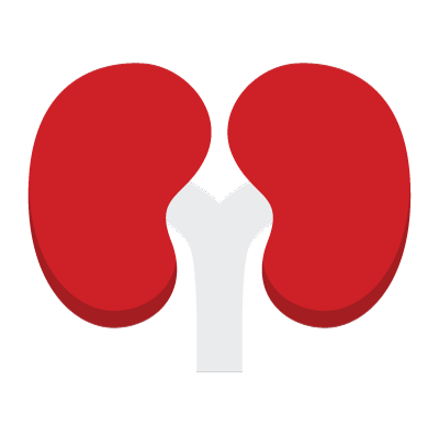 Pictogram of a human lung